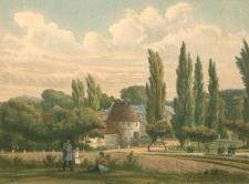 Brüninghausen nr 21