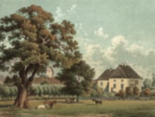 Holzhausen nr 388