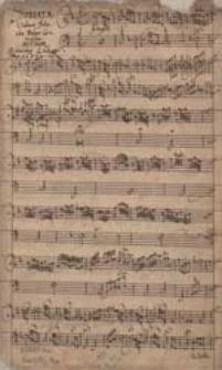 Sonata. Violino solo cum Basso Continuo [d-moll]