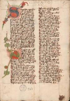 Sermones de tempore ; Themata sermonum de passione ; Tractatus de 4 instinctibus