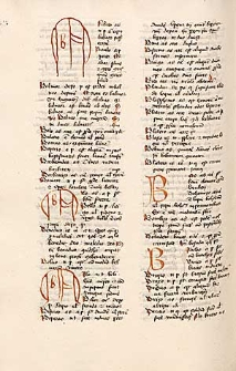 Brevilogus. Vocabularius Latino-Teutonicus