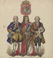 [Ubiory w Polsce 1200-1795. Przez J. Matejkę, 1697-1795, ryc. 86].