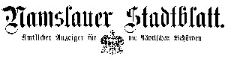 Namslauer Stadtblatt 1904-11-08 [Jg. 33] Nr 88