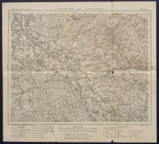 Karte des westlichen Russlands 1:100 000 - K 39. Lipa