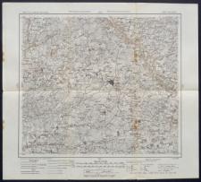 Karte des westlichen Russlands 1:100 000 - M 20. Rosienie