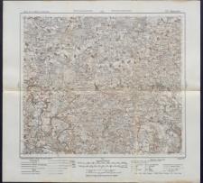 Karte des westlichen Russlands 1:100 000 - Q 22. Mejszagoła