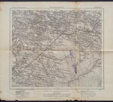Karte des westlichen Russlands 1:100 000 - S 25. Wischnew