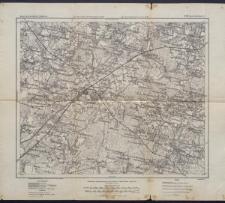 Karte des westlichen Russlands 1:100 000 - S 29. Ljachowitschi