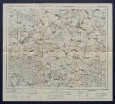 Karte des westlichen Russlands 1:100 000 - M 35. Parczew
