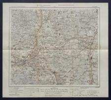 Karte des westlichen Russlands 1:100 000 - N 21. Wilki