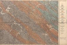 Atlas geologiczny Galicyi 1:75 000 - Pas 7 Słup VIII Ustrzyki Dolne