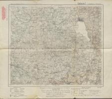 Karte des Deutschen Reiches 1:100 000 - 78. Mehlkehmen-Wisztyniec