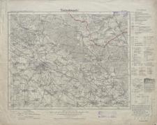 Karte des Deutschen Reiches 1:100 000 - 451. Brieg