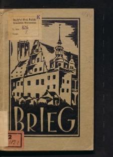 Illustrierter Führer durch Brieg unter besonderer Berücksichtigung heimatlicher Kunstdenkmäler
