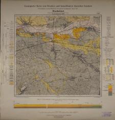 Geologische Karte 1:25 000 - 3306 Bischofstal