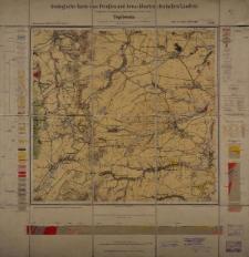 Geologische Karte 1:25 000 - 3136 Tepliwoda