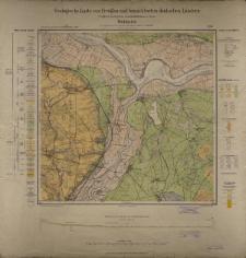 Geologische Karte 1:25 000 - 2186 Wellmitz