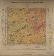 Geologische Karte 1:25 000 - 2124 Kalzig