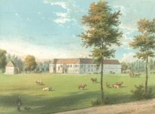 Steinhausen nr 341