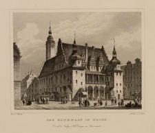 Das Rathhaus in Brieg
