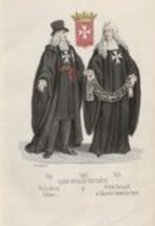 Rys historyczny zgromadzeń zakonnych obojej płci wraz z rycerskiemi zakonami i orderami państw. T. 3, Zakony rycerskie i ordery państw