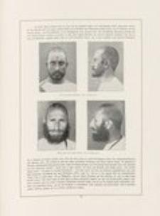 Kriegsgefangene. Hundert Steinzeichnungen von Hermann Struck