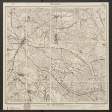 Herrnstadt 2561 [Neue Nr 4466] - 1919