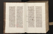 Sermones de tempore ; Sermones super epistolas dominicales per circulum anni