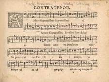 Melodia epithalamii illustrissimi principo et domino domino Johanni Friderico II [...] Quinque vocum.