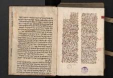 Sermones Thesauri novi per adventum ; Tractatus de praeceptis decalogi ; Sermones de tempore et de sanctis