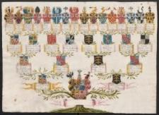 Drzewo genealogiczne Hatzfeldów